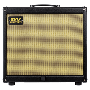 DV Mark Guitar Amplifier EGC RAW DAWG 60 S