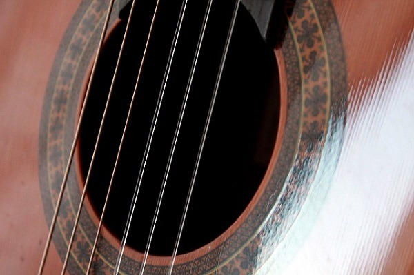 What Is The Best Guitar For Beginners