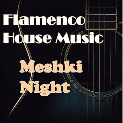 Flamenco House Music   Meshki Night