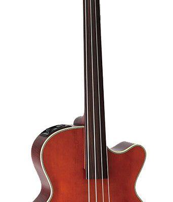 Takamine Legacy Series Upright AC EL Fretless Bass with Cutaway